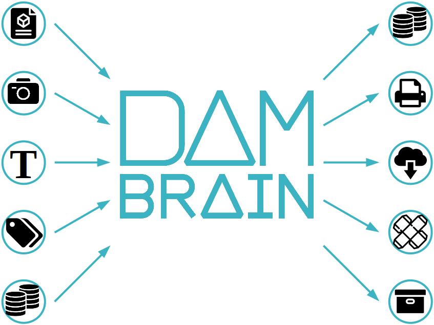 Eingabe- und Ausgabe-Schnittstellen des DAM Systems